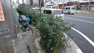 巣鴨清掃0316.JPG