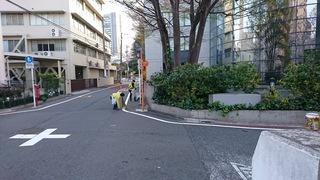 目黒川清掃0327.JPG